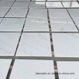 床タイルおよび壁のタイルのための中国の東洋の白い大理石のフロアーリング