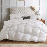 Роскошный белый подушками все сезоны Белый гипоаллергенные подушки вставить полированный корпус Poly-Cotton вниз доказательства одеяло