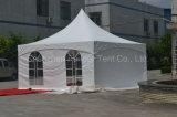 Pagoda tenda 5mx5m para Gazebo ou Pavilion no jardim de sua família