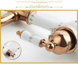 陶磁器新しいデザインは選抜するハンドルの旧式な洗面器のコック(ZF-610-1)を