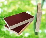 Encofrado de madera contrachapada de construcción reutilizables