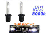 12V / 24V 35W / 50W H1 HID Xenon Bulb for Cars 3000k-30000k en Stock