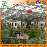 Invernadero de vidrio para el restaurante ecológico y jardín de turismo vegetal