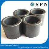 Ferrita dura/anillos de cerámica del imán de /Anisotropic para el motor de escalonamiento
