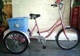 20 '' велосипед/велосипед/задействовать колеса стали 3 для взрослого Sh-T027