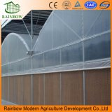 농업 /Gardening를 위한 PE 필름 온실
