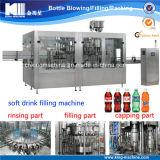 Bouteille de boissons gazéifiées Remplissage / Traitement / Ligne d'emballage