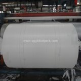 Tissu de polypropylène tissé blanc en plastique pour traitement UV