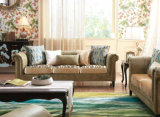Il sofà classico popolare ha impostato con legno solido