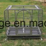 Heißer Verkaufs-Hunderahmen/quadratischer Gefäß-Hunderahmen