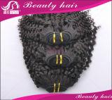 암갈색 밝은 밤색 #2 의 #4 머리 연장이 브라질 Virgin 머리 3PCS 브라질 바디 파 사람의 모발에 의하여 길쌈한다