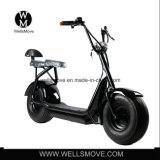 Самый лучший мотоцикл 1000W 60V 35km/H электричества большого колеса надувательства 2017