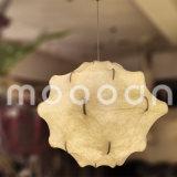 식당 침실을%s Handmade 장식적인 백색 실크 피부 Taraxacum 고치 현탁액 빛