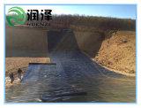 Geomembrana HDPE para la Agricultura La agricultura