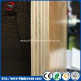 Folha de madeira compensada comercial de 15mm 18mm Eucalyptus Core