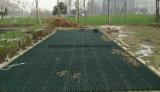 Aard die het Net van het Gras voor de Installatie van het Gras plant
