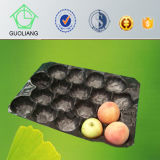 Der SGS-/FDA Frucht-verpackentellersegment Zustimmungs-Großverkauf-Nahrungsmittelgrad-Blasen-pp.