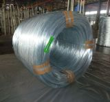 Galvanized Patented Wire for Re-Drawing