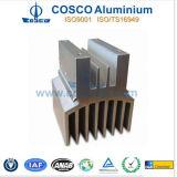 Electronics (RoHS)のためのカスタマイズされたAluminumかAluminium Radiator