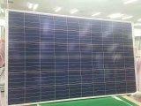 Grande modulo solare del comitato solare di promozione in azione