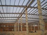 Gruppo di lavoro chiaro di montaggio della struttura d'acciaio (DG2-029)