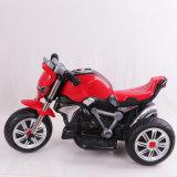 Chinese Factory Mini moto vélo pour enfants avec En71 approuvé