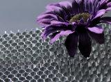Âmes en nid d'abeilles d'Alumium