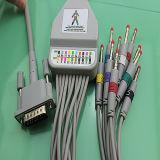 HP/Philips einteiliges Kabel der Reihen-EKG mit Leitungsdrähten (AMD H003CA20K)