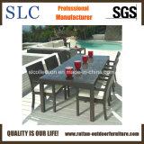 Openlucht Rieten Meubilair/rieten meubilair/het dineren meubilairreeks (Sc-B6023)