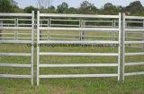 Comitati del bestiame/iarde di comitati/rete fissa del bestiame