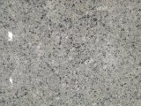 Nice Grey Direct Granite Factory Price for Mexico City Market