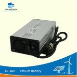 Батарея иона лития силы DC De-Abl 20ah 12V наслаждения перезаряжаемые