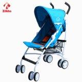 Guarda do bebê carro com a estrutura e o assento