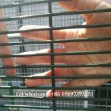 Maglia galvanizzata della prigione delle 358 barriere di sicurezza