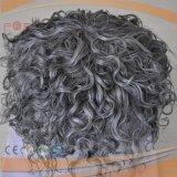 巻き毛の灰色の毛の置換システム