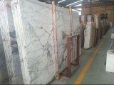 Importados Arabescato Corchia losa pulido de mármol blanco de la superficie/Vanitytop/fuente/Chimenea/fuente/Wallpanel/Piso//Escalera de baño cocina/comedor