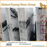 China pulido Panada losa de mármol blanco