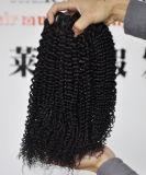 ブラジルのバージンの毛の拡張ねじれた巻き毛の人間の毛髪
