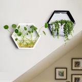 Acrílico criativos personalizados pendurado na parede do tanque de peixes ornamentais