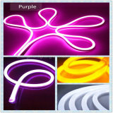 Singoli indicatori luminosi del tubo al neon del giardino LED di colore di alta qualità