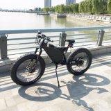 脂肪質のバイク26の完全な中断脂肪バイク