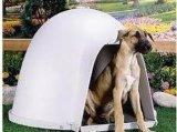 Moldeo por inyección de la casa plástica de la buena calidad para el perro