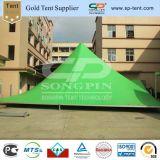 Гуанчжоу зеленый Большая пагода диких гусей событий большой открытый палатку в рамке