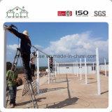 Niedrige Kosten-Stahlkonstruktion-Arbeitskraft-Anpassung