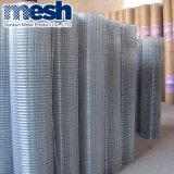 Best Price Building Material Galvanized Welded Wire Mesh one Salts