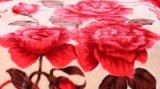 Напечатанное высоким качеством толщиное теплое одеяло Raschel