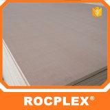 Compensato Bendable Lowes, schede di Rocplex di modulo concrete filmate 18mm