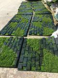 Alta qualità delle piante e dei fiori artificiali del giardino verticale Gu1220212506