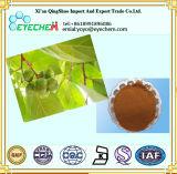 Выдержка Pygeum Africanum/Phytosterols 2.5%