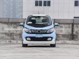 Reines elektrisches intelligentes 2 Sitzauto mit Batterie